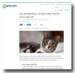 Care.com: Cat Life Expectancy: 12 Tips to Help Your Pet Live A Long Life!