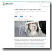 Care.com: Crate Training for Your Dog: Good or Bad?