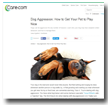 Care.com: Dog Aggression: HOw to Get Your Pet to Play Nice