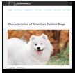 Cuteness: Characteristics of American Eskimo Dogs